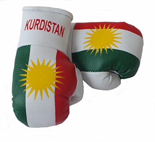 Sportfanshop24 Mini Boxhandschuhe Kurdistan, 1 Paar (2 Stück) Miniboxhandschuhe z. B. für Auto-Innenspiegel