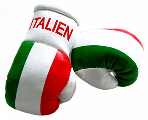 Doktor Hardstuff Mini Boxhandschuhe - Italien